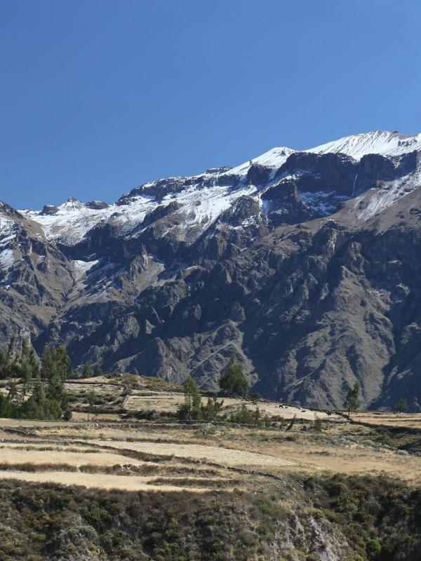 Canyon de Colca Pérou